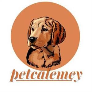 Pet Calemey